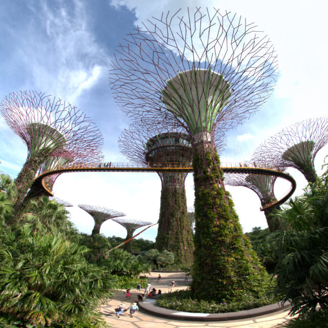 Gardens By The Bay @ Singapore