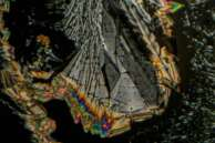 Asprin by Polarized Light Microscopy