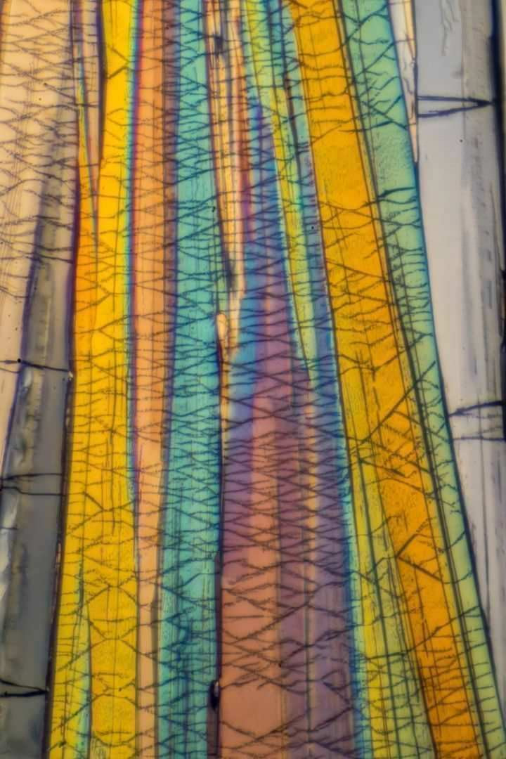 Benzoic Acid by Polarized Light Microscopy