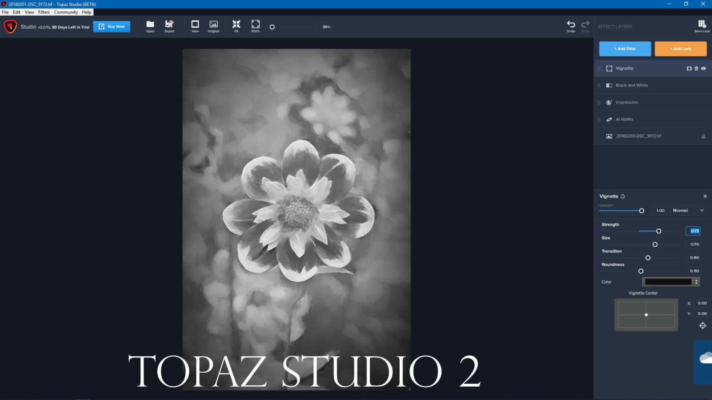 Topaz Studio Archives - Travis Hale (Photography and Science)
