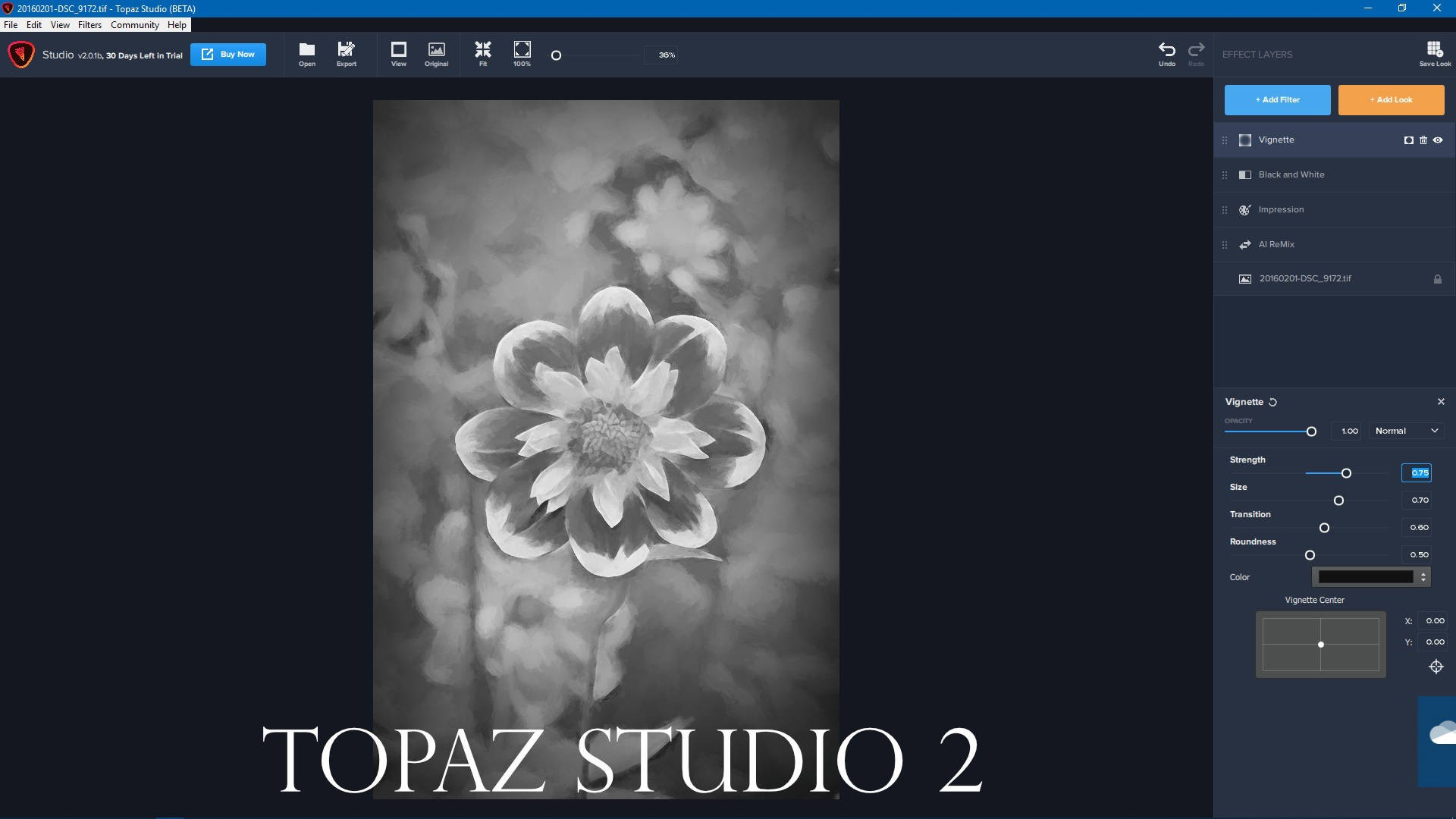 Flower-Topaz-studio-2